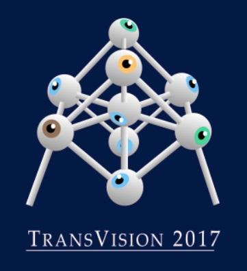 TransVision 2017