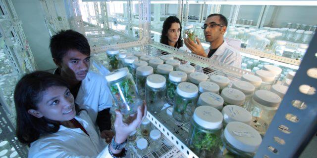 Transhumanisme nature ordre naturel éthique biotechnologies génétique PMA